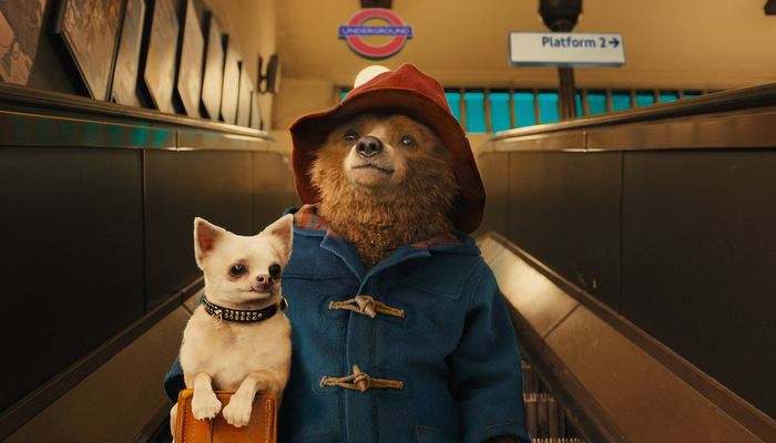 paddington-stills.jpg
